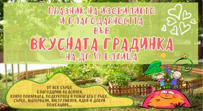 Плодородна вкуснотийка в личната ни зеленчукова градинка 1